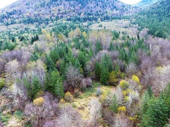 null bed null bath Vacant Land at NE Belvins Rd Amboy, WA, 98601 is for sale at 125k - 1 of 24