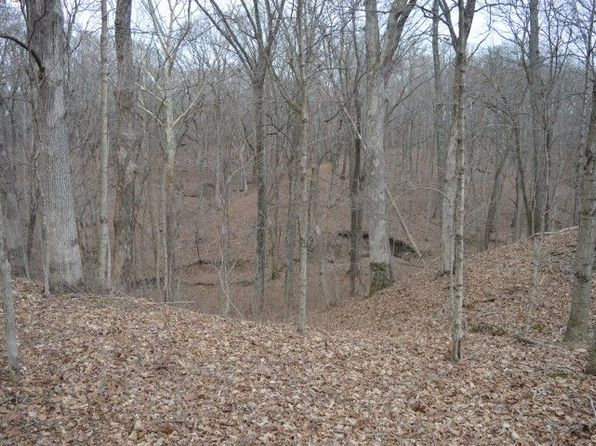 null bed null bath Vacant Land at 2250 E Saint Elmo, IL, 62458 is for sale at 405k - 1 of 51