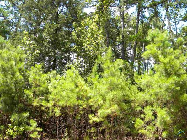 null bed null bath Vacant Land at 510 Wild Lake Path Holly Lake Ranch, TX, 75765 is for sale at 20k - 1 of 16