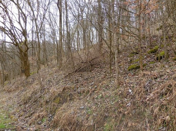 null bed null bath Vacant Land at 50 Ac Ben Birdwell Ln Gainesboro, TN, 38562 is for sale at 70k - 1 of 6