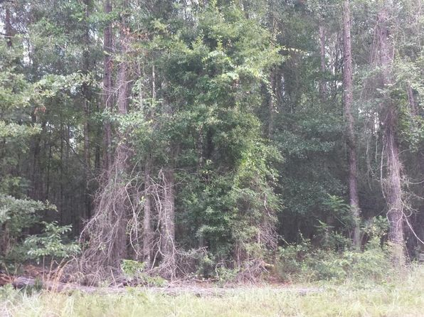 null bed null bath Vacant Land at 0000 Lawrence Rd Marianna, FL, 32446 is for sale at 30k - 1 of 3