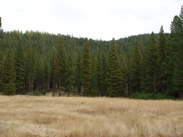 null bed null bath Vacant Land at 1138 Highway 89 Clio, CA, 96106 is for sale at 495k - 1 of 5