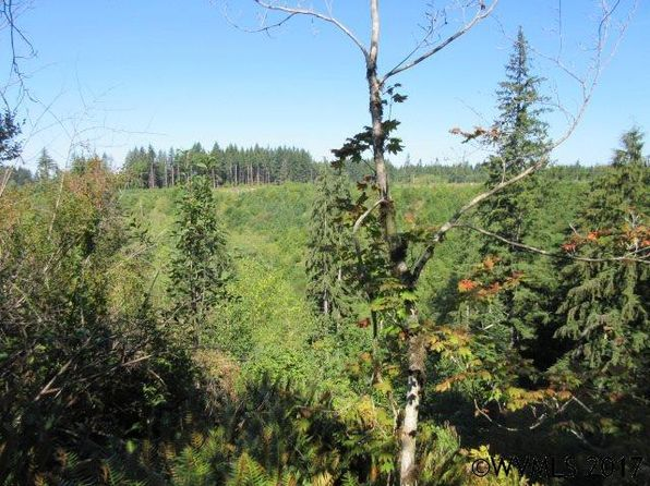null bed null bath Vacant Land at  Deverell Rd Corbett, OR, 97019 is for sale at 1.16m - 1 of 15