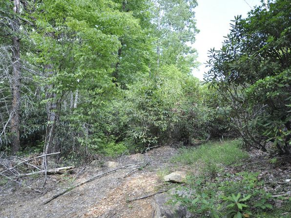 null bed null bath Vacant Land at 1619 Granny Squirrel Dr Andrews, NC, 28901 is for sale at 5k - 1 of 4