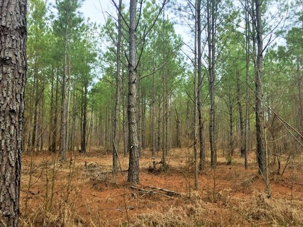 null bed null bath Vacant Land at 940 Highway 601 S Lugoff, SC, 29078 is for sale at 550k - 1 of 8