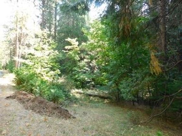 null bed null bath Vacant Land at 0 Ashland Dr Pioneer, CA, 95666 is for sale at 56k - 1 of 7