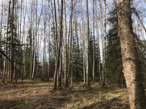 null bed null bath Vacant Land at  Wehr Foothill Ests Eagle River, AK, 99577 is for sale at 125k - 1 of 5