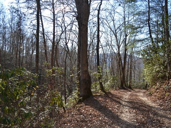 null bed null bath Vacant Land at 0 Camp Branch Rd Topton, NC, 28781 is for sale at 35k - 1 of 18