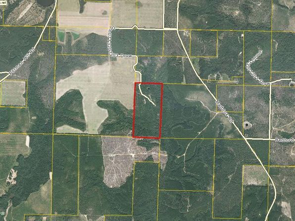 null bed null bath Vacant Land at 803 Maddox Rd Marianna, FL, 32448 is for sale at 229k - 1 of 8