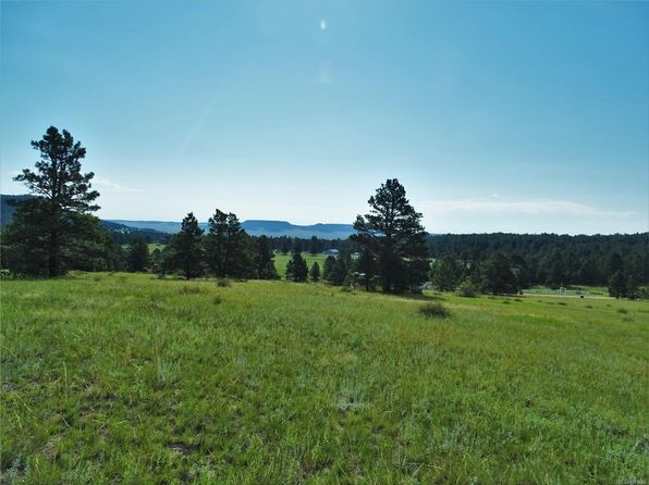 null bed null bath Vacant Land at 8653 N Teacup Grove Rd Elbert, CO, 80106 is for sale at 260k - 1 of 15
