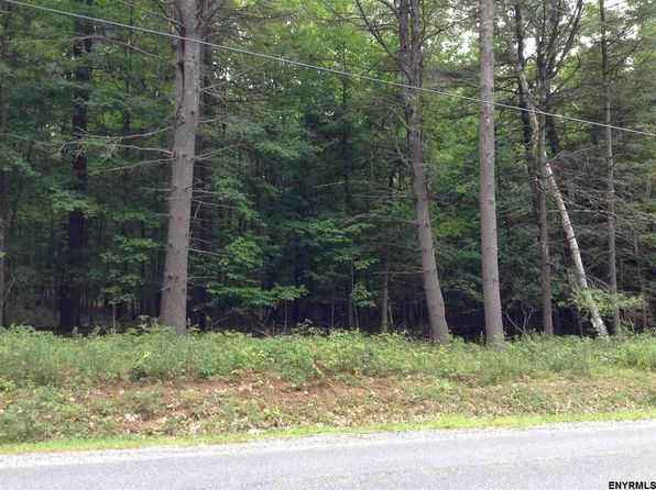 null bed null bath Vacant Land at 388 Greene Rd Greenfield Center, NY, 12833 is for sale at 75k - google static map