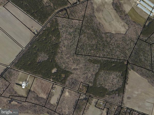 null bed null bath Vacant Land at  TANYARD RD PRESTON, MD, 21655 is for sale at 350k - google static map