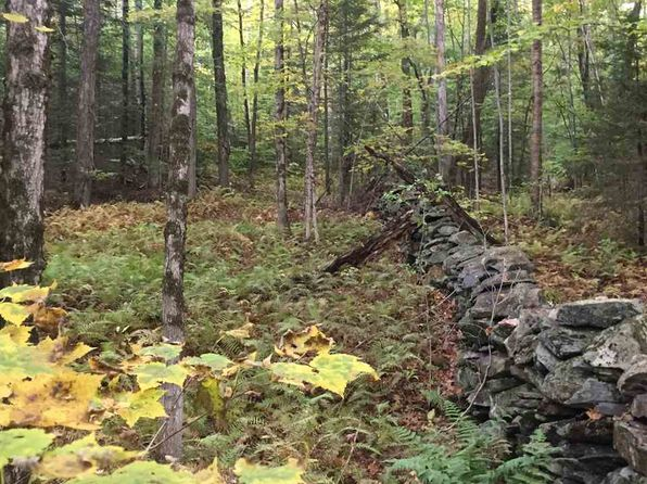 null bed null bath Vacant Land at 0 Tyson Rd Reading, VT, 05062 is for sale at 10k - 1 of 5