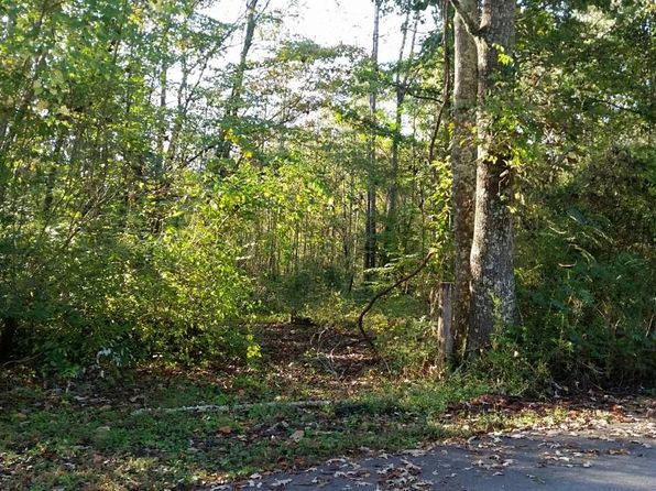 null bed null bath Vacant Land at  Shultz Hollow Rd Clinton, TN, 37716 is for sale at 30k - 1 of 2