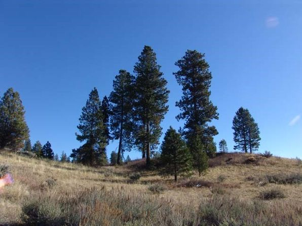 null bed null bath Vacant Land at 4 Joshua Dr Cascade, ID, 83611 is for sale at 90k - 1 of 12