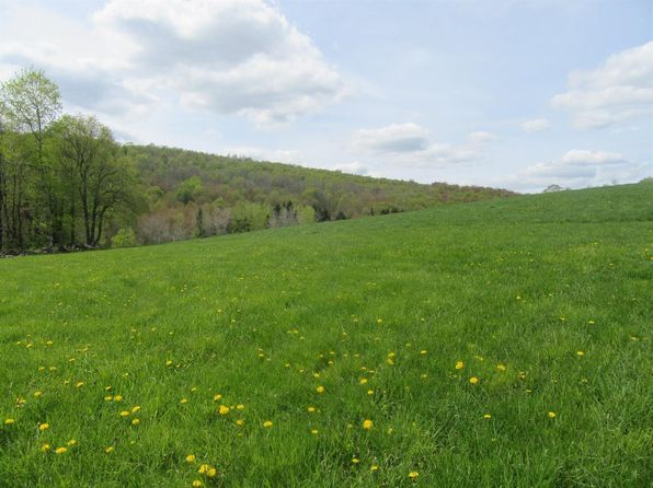 null bed null bath Vacant Land at ED Kllug Rd Franklin, NY, 13775 is for sale at 67k - 1 of 6