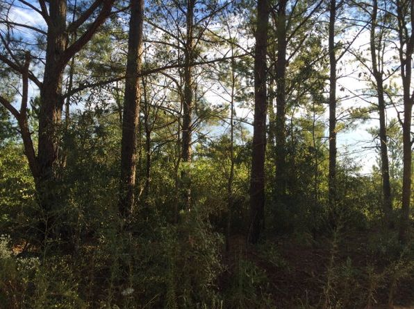 null bed null bath Vacant Land at 00 Oak Ridge Club Rd Windsor, SC, 29856 is for sale at 9k - 1 of 5