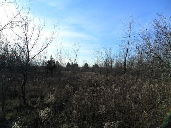 null bed null bath Vacant Land at 29737 S Klemme Rd Beecher, IL, 60401 is for sale at 59k - 1 of 12