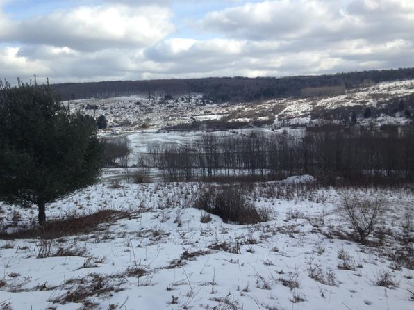 null bed null bath Vacant Land at  RR 320 Norwich, NY, 13815 is for sale at 295k - 1 of 24