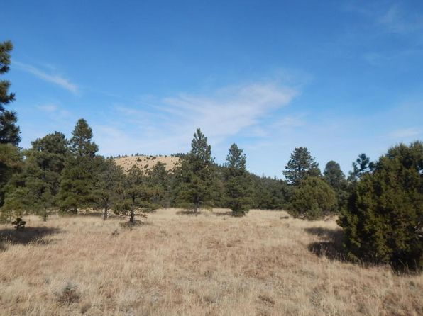 null bed null bath Vacant Land at  Red Cabin Rnch Vernon, AZ, 85940 is for sale at 149k - 1 of 3