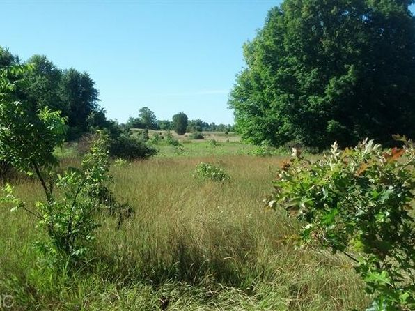 null bed null bath Vacant Land at 1 Center St Douglas, MI, 49406 is for sale at 112k - 1 of 2