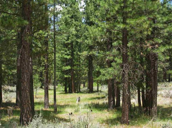 null bed null bath Vacant Land at 90 CAYDEN DR CLIO, CA, 96106 is for sale at 145k - 1 of 10