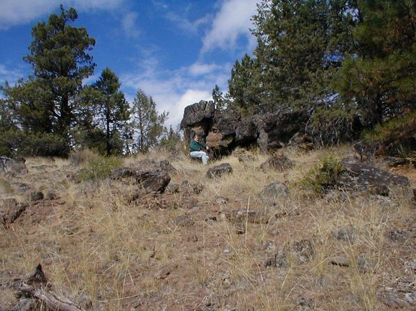null bed null bath Vacant Land at 1300 Buffalo Bonanza, OR, 97624 is for sale at 13k - 1 of 4