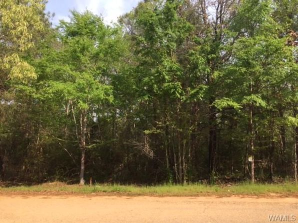 null bed null bath Vacant Land at 0 0 Mary Lee Ave Peterson, AL, 35453 is for sale at 8k - 1 of 2
