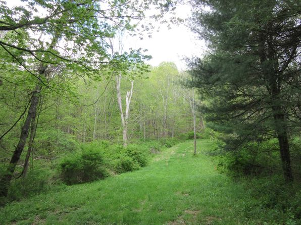 null bed null bath Vacant Land at 4993 Route 22 Amenia, NY, 12501 is for sale at 79k - 1 of 10
