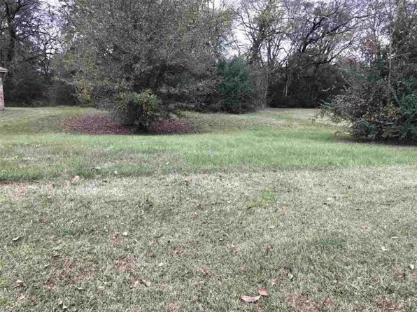 null bed null bath Vacant Land at  Northgate Dr Canton, MS, 39046 is for sale at 21k - 1 of 5