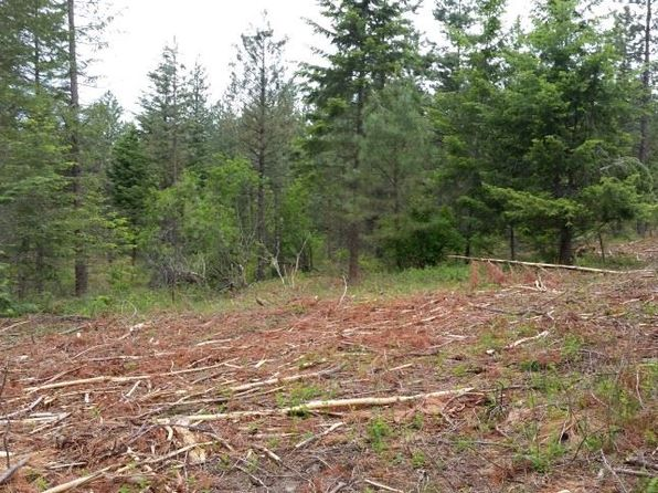 null bed null bath Vacant Land at 4775 Whittier Rd Clayton, WA, 99110 is for sale at 59k - 1 of 7