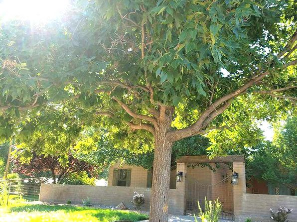 4 bed 3 bath Single Family at 264 Rivera Ln Corrales, NM, 87048 is for sale at 765k - 1 of 38