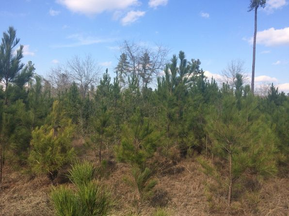 null bed null bath Vacant Land at  Calvary Rd NE Glennville, GA, 30427 is for sale at 54k - google static map