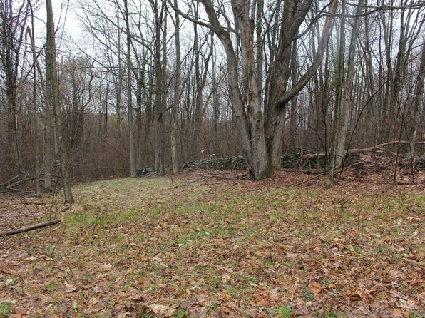 null bed null bath Vacant Land at 603 Poet Hill Rd Franklin, NY, 13775 is for sale at 20k - 1 of 4