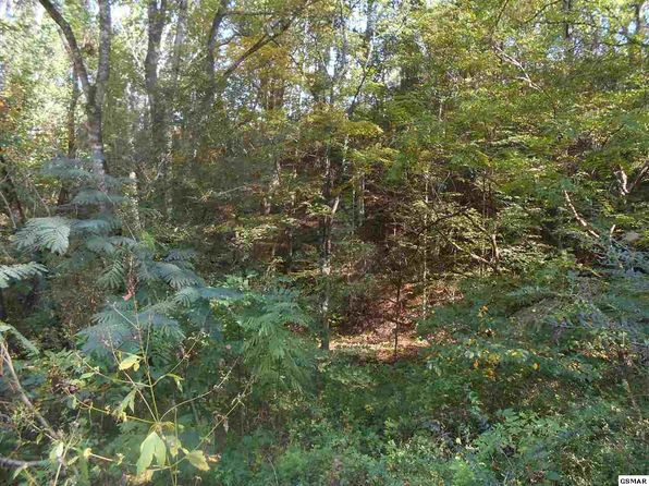 null bed null bath Vacant Land at  Velvet Dr Cosby, TN, 37722 is for sale at 13k - 1 of 5