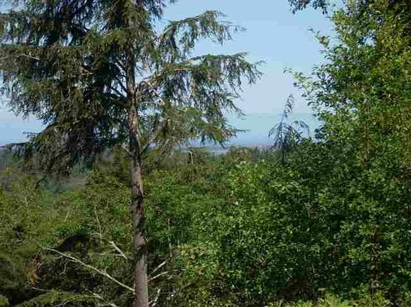null bed null bath Vacant Land at 140 National Parkway Rd Crescent City, CA, 95531 is for sale at 99k - 1 of 7