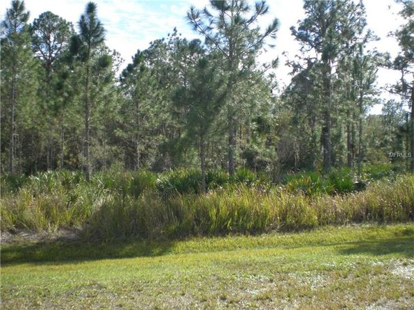 null bed null bath Vacant Land at 41110 18th Ter E Myakka City, FL, 34251 is for sale at 52k - 1 of 5