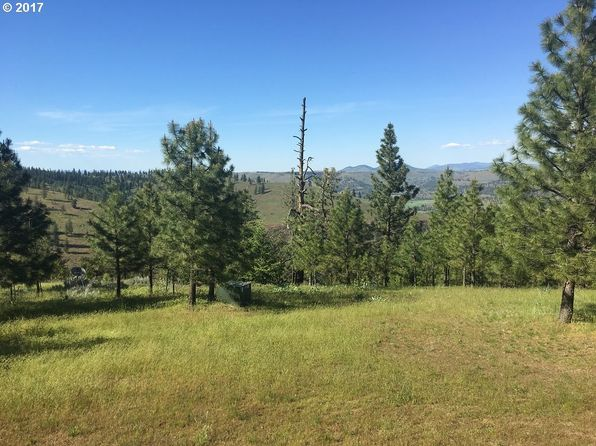 null bed null bath Vacant Land at 34800 Partridge Ln N Davenport, WA, 99122 is for sale at 90k - 1 of 11