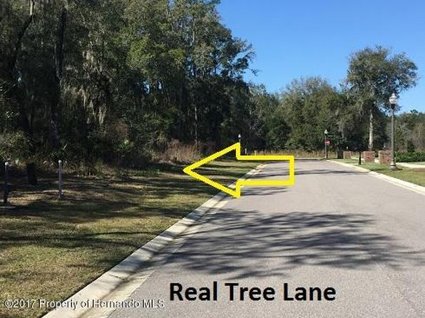 null bed null bath Vacant Land at 0 Real Tree Ln Brooksville, FL, 34601 is for sale at 95k - 1 of 2