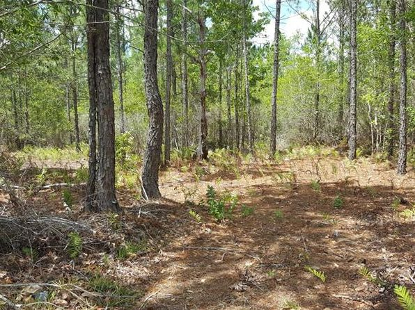 null bed null bath Vacant Land at 20209 E Colonial Dr Christmas, FL, 32709 is for sale at 64k - 1 of 5