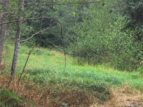 null bed null bath Vacant Land at 0 251 Lake Cavanaugh Rd Mount Vernon, WA, 98274 is for sale at 700k - 1 of 23