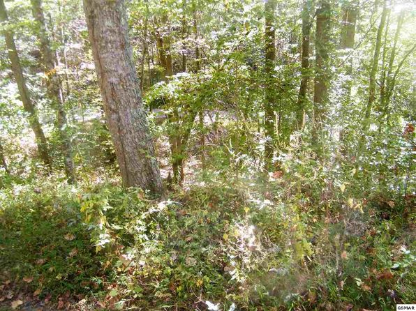 null bed null bath Vacant Land at  White White Rock Way Cosby, TN, 37722 is for sale at 30k - 1 of 11