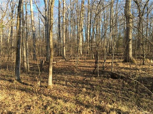 null bed null bath Vacant Land at 2748 Ravenwood Rd Columbia, VA, 23038 is for sale at 60k - 1 of 5