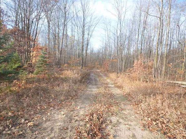 null bed null bath Vacant Land at O Brien Rd Vassar, MI, 48768 is for sale at 161k - 1 of 6