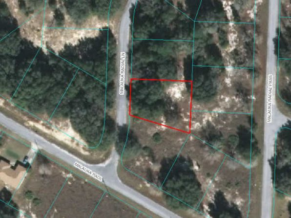 null bed null bath Vacant Land at 00 Malauka Radial Ln Ocklawaha, FL, 32179 is for sale at 6k - google static map