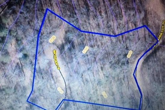 null bed null bath Vacant Land at 00 Michigan Ln Webster, NC, 28779 is for sale at 24k - google static map