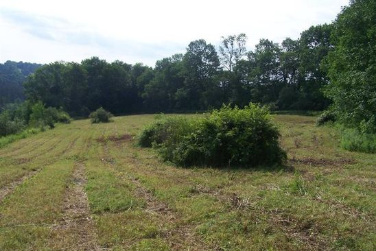 null bed null bath Vacant Land at  Shawler Brook(cty 24) Rd Sherburne, NY, 13460 is for sale at 15k - google static map