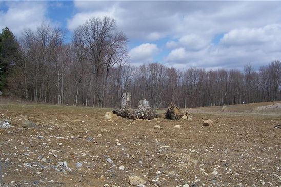 null bed null bath Vacant Land at 154 Juniper Dr Columbiana, OH, 44408 is for sale at 32k - google static map