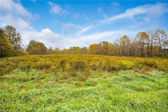 null bed null bath Vacant Land at  Adams Rd Lisbon, OH, 44432 is for sale at 15k - google static map