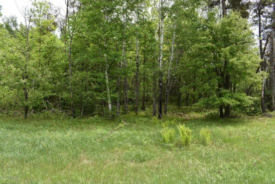 null bed null bath Vacant Land at 2 SW Hidden Meadow Ln Bemidji, MN, 56001 is for sale at 14k - google static map
